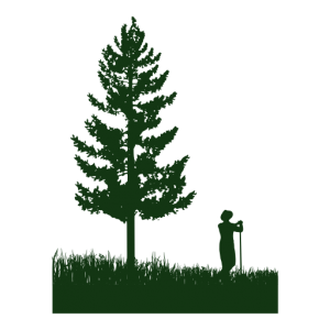logo-512x512